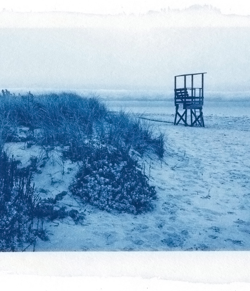 Cyanotype print of Cape Cod (section)
